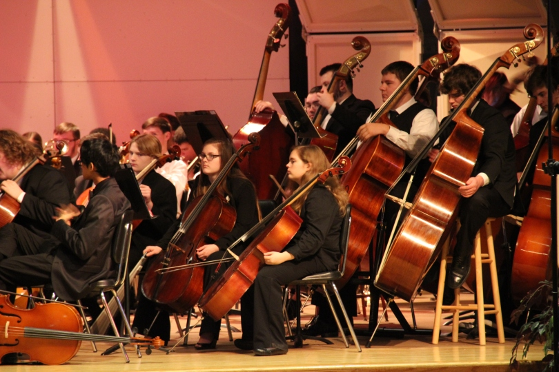 Junior, Mikki Gifford, playing in the PMEA District Orchestra. Hosted by Meadville High School
