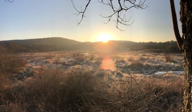 Hunting Throughout Deer Rifle Season
